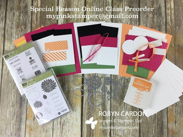 Special Reason Online Class Preorder!