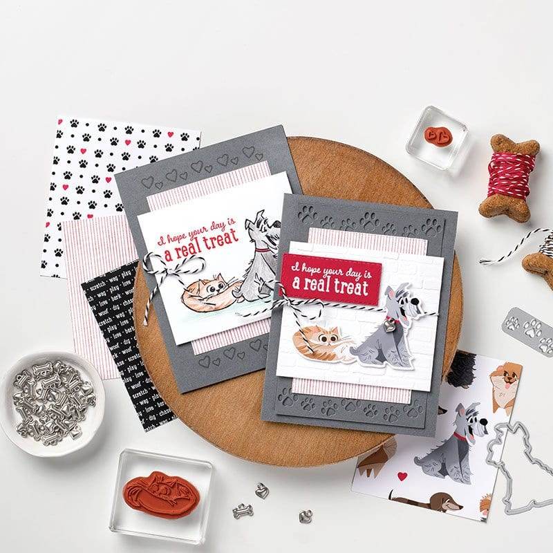 Week 4 of Extravaganza Promotion & Stampin' Up! Pampered Pets Spotlight & 3 New