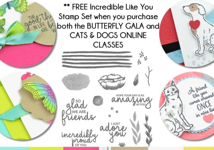 Butterfly Gala & Dogs & Cats Combo Class